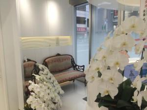 お花でいっぱいの待合室。 家具や調度品は先生セレクト。